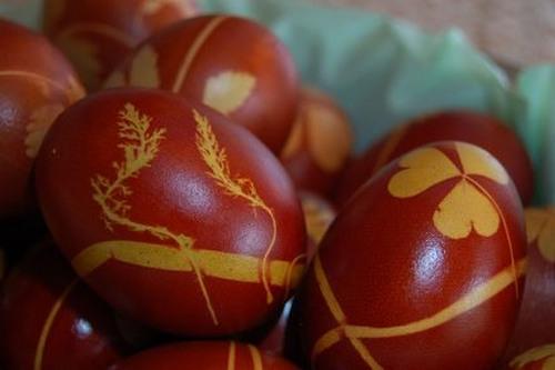 яйца красить3 (500x333, 41Kb)