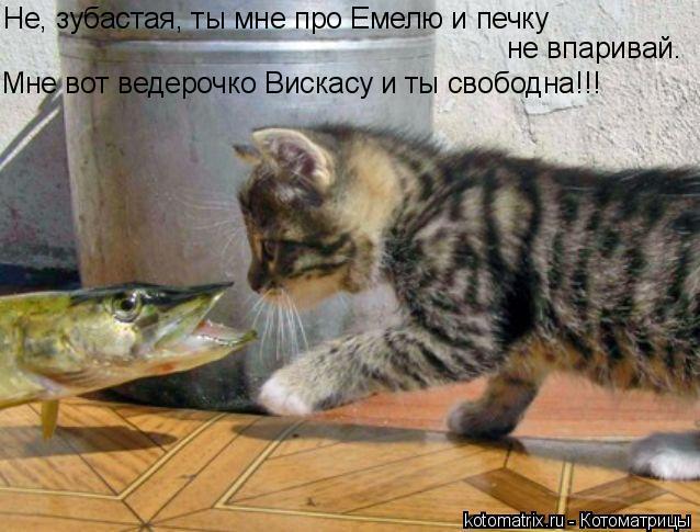 http://img0.liveinternet.ru/images/attach/c/8/100/52/100052834_large_4059800_092410ed12421c73d7e3250bf4c2e1e5.jpg