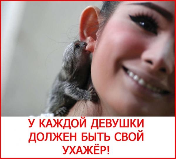 2835299_PRO_DEVYShKY (600x542, 181Kb)