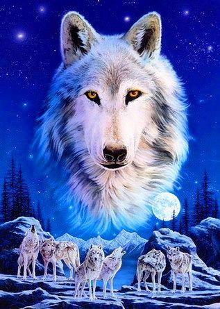 волк (317x445, 44Kb)