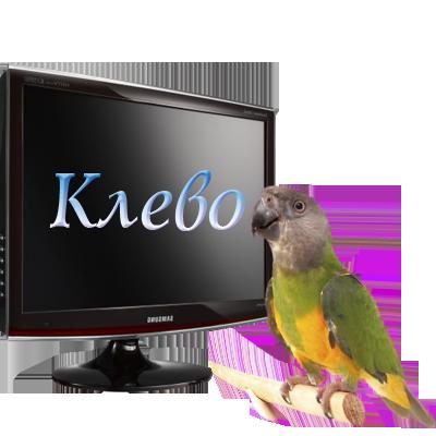80214035_klevo (400x400, 124Kb)