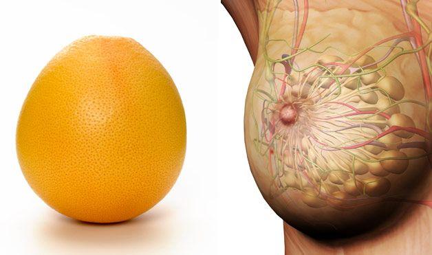 Грейпфрут и грудь (628x371, 38Kb)