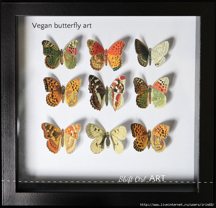 Vegan-butterfly-framed-art-paper-craft (700x674, 258Kb)