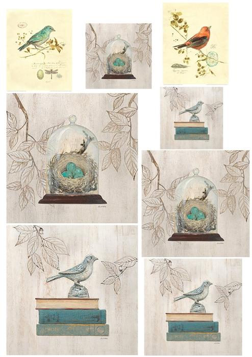 птички 002 copy (494x700, 263Kb)