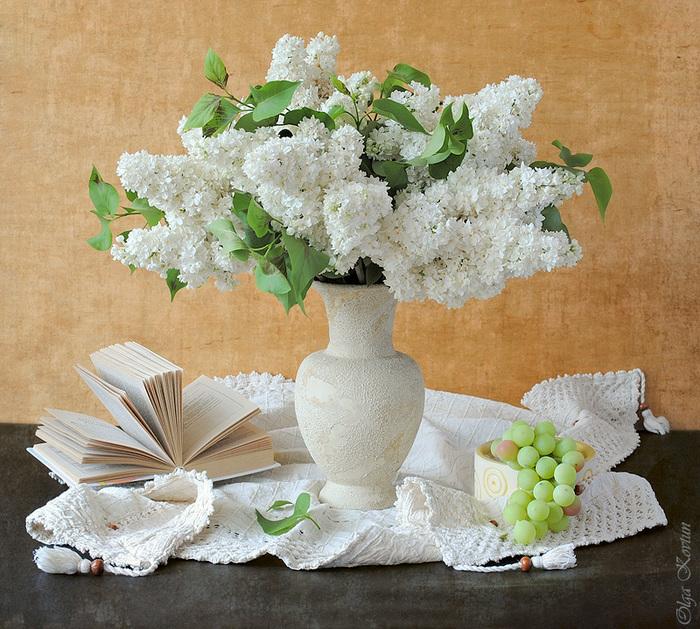белая сирень в вазе (700x629, 237Kb)