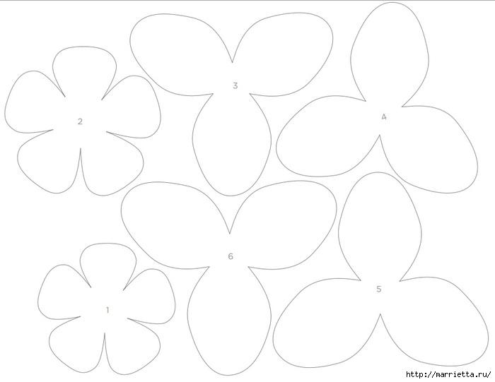 Гардения из бумаги. Шаблон и мастер-класс (10) (700x541, 65Kb)