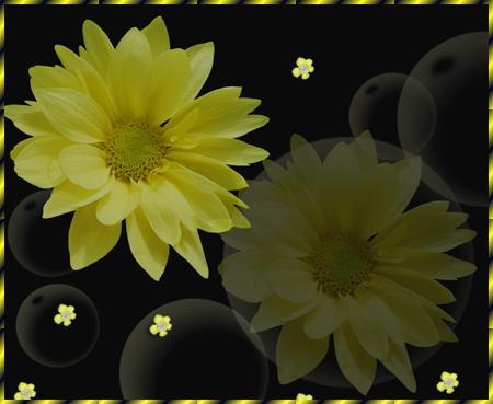 Желтый-георгин (450x369, 171Kb)