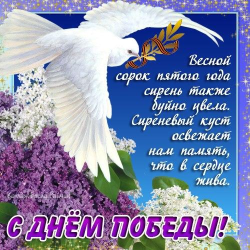 foto5.jpg_3265443_7925261 (500x500, 94Kb)