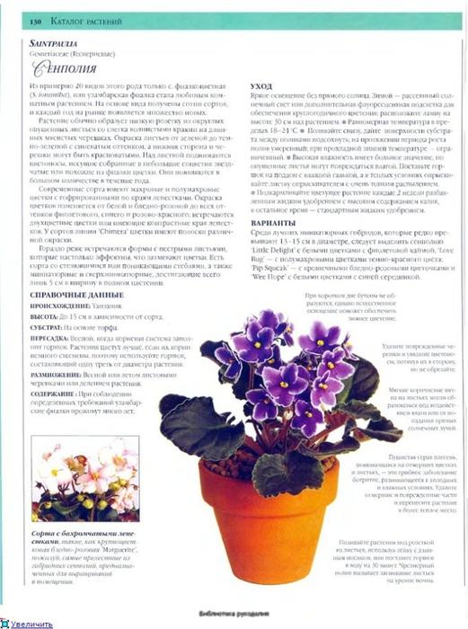 комнатные растения (2) (521x700, 235Kb)