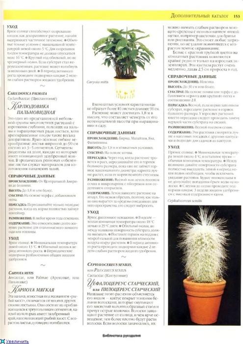 комнатные растения (6) (495x700, 236Kb)