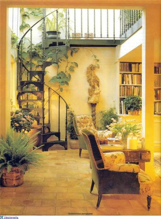 комнатные растения (58) (515x700, 282Kb)