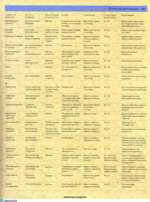 комнатные растения (74) (519x700, 266Kb)