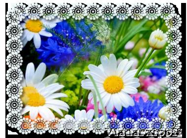 awa_summer (380x280, 253Kb)