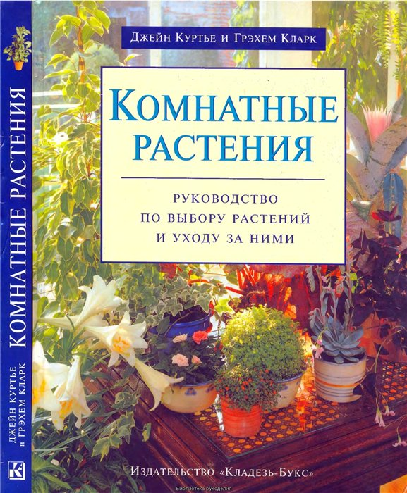 комнатные растения (206) (577x700, 128Kb)
