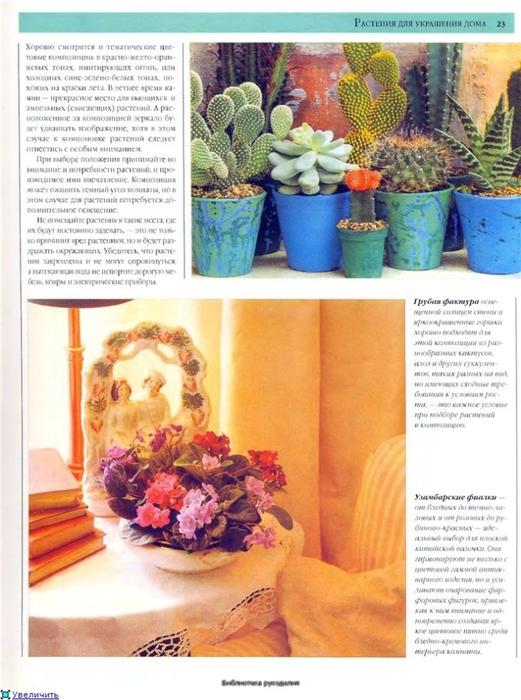 комнатные растения (97) (521x700, 271Kb)