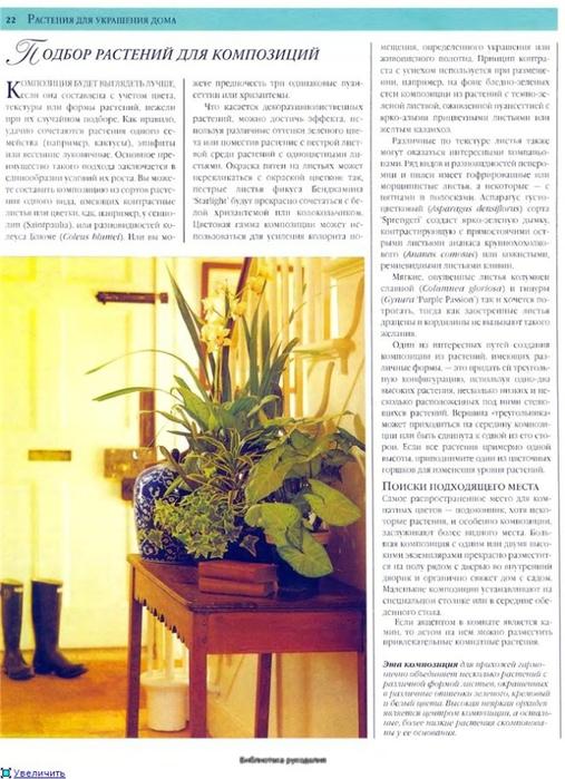 комнатные растения (125) (507x700, 270Kb)