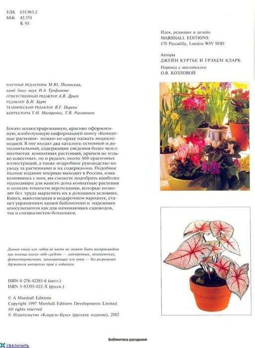комнатные растения (132) (513x700, 164Kb)