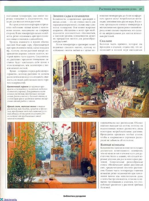 комнатные растения (152) (520x700, 291Kb)