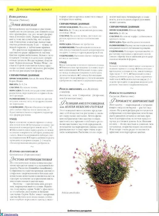 комнатные растения (175) (515x700, 218Kb)