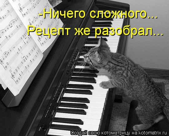 kotomatritsa_Bk (550x442, 50Kb)
