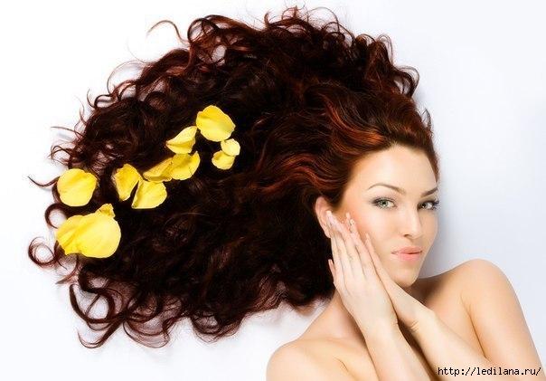 для волос (604x421, 111Kb)