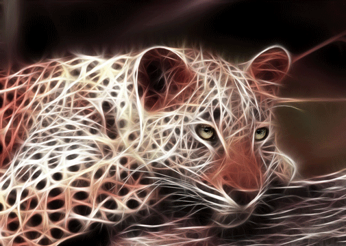 animal-fractal-wallpaper-tiger (505x360, 115Kb)