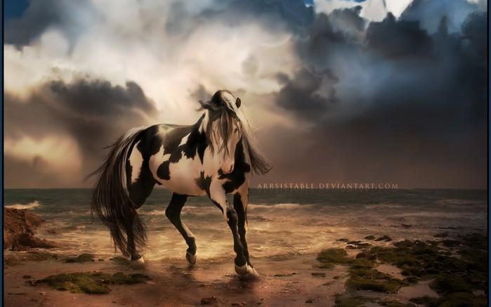 красивые фотографии лошадей (1) (700x437, 62Kb)