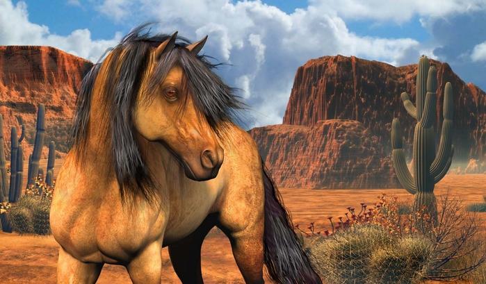 красивые фотографии лошадей (3) (700x409, 254Kb)
