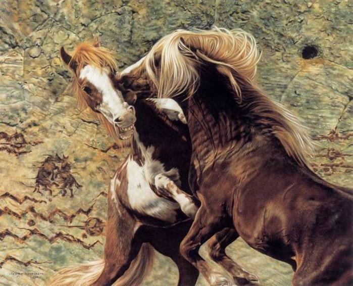 красивые фотографии лошадей (17) (700x566, 135Kb)