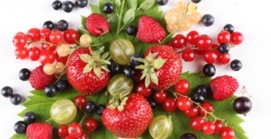 ягоды и фрукты (528x272, 35Kb)