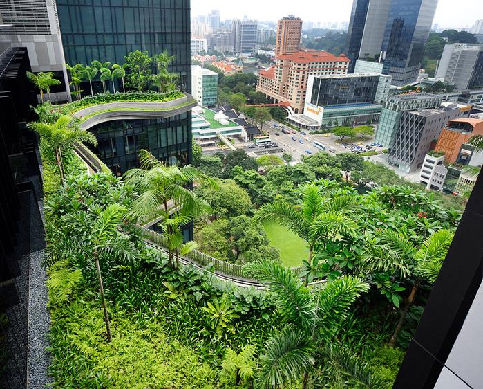 отель  Parkroyal Сингапур (700x562, 393Kb)