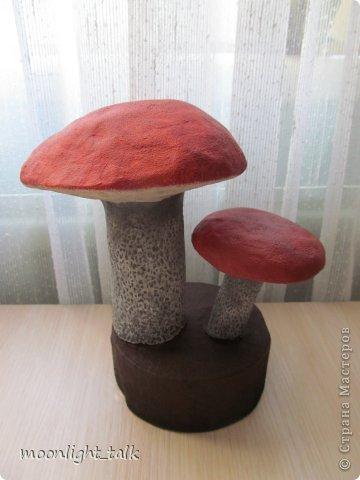осенние грибы из папье-маше (5) (360x480, 27Kb)