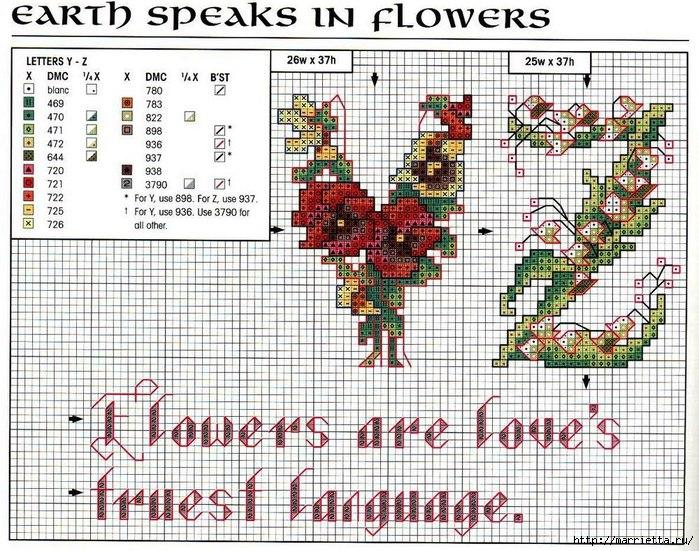 Красивая цветочная вышивка - АЛФАВИТ (25) (700x551, 350Kb)