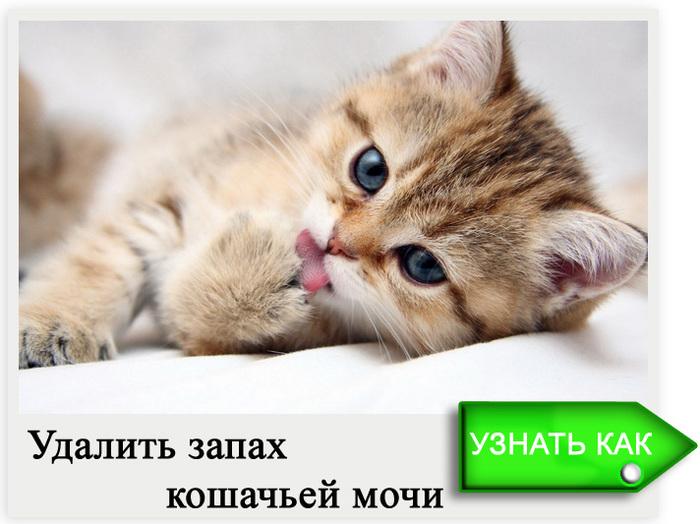 3807717_125 (700x524, 118Kb)