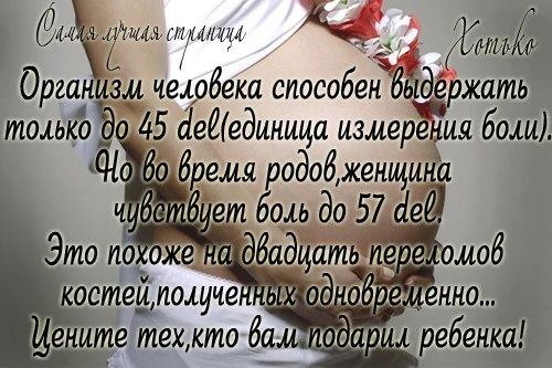 q_92WgAgsWY (500x333, 59Kb)