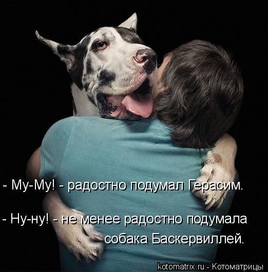 1248363121_prikoly_jivotnie-30 (522x531, 45Kb)