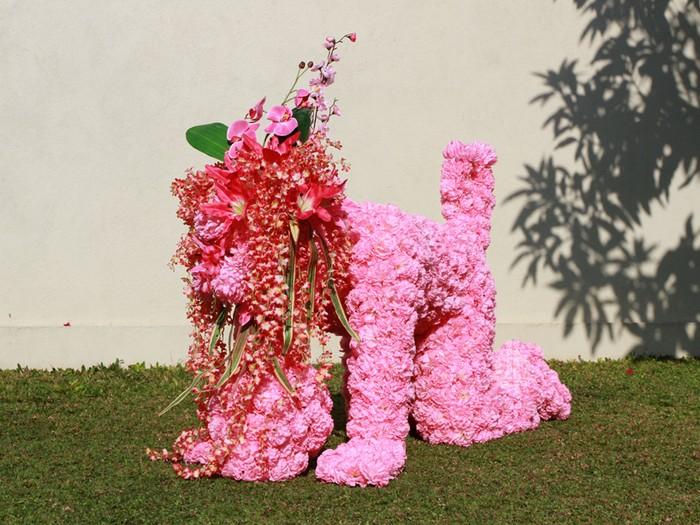 3085196_flowergeneration1 (700x525, 131Kb)
