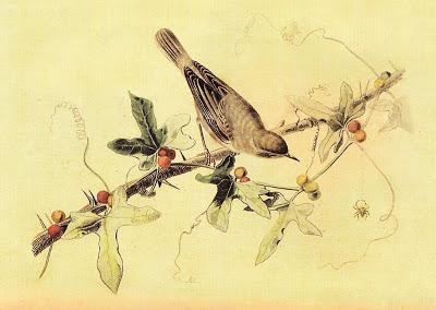bird 1 (400x284, 34Kb)