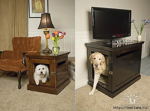 для собак (490x365, 90Kb)