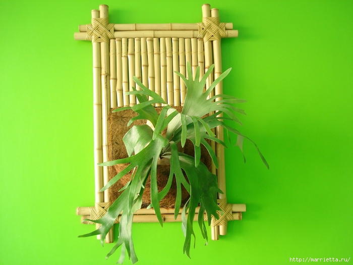 бамбук. бамбуковые фантазии (50) (700x525, 233Kb)