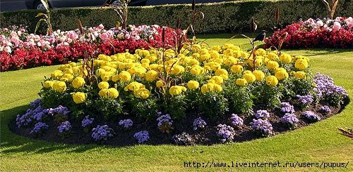 cvetochnye-klumby (500x245, 198Kb)