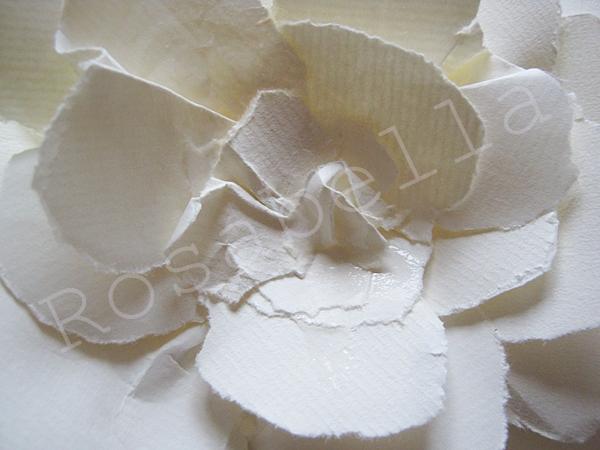 розы из бумаги (10) (600x450, 207Kb)