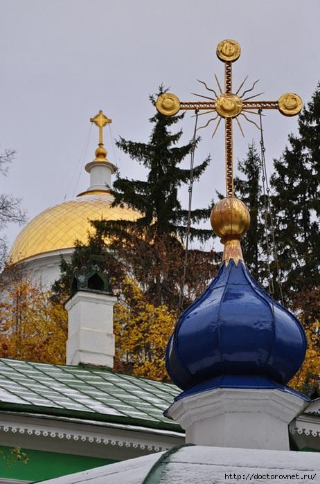 Псково-Печерский монастырь36 (462x700, 211Kb)