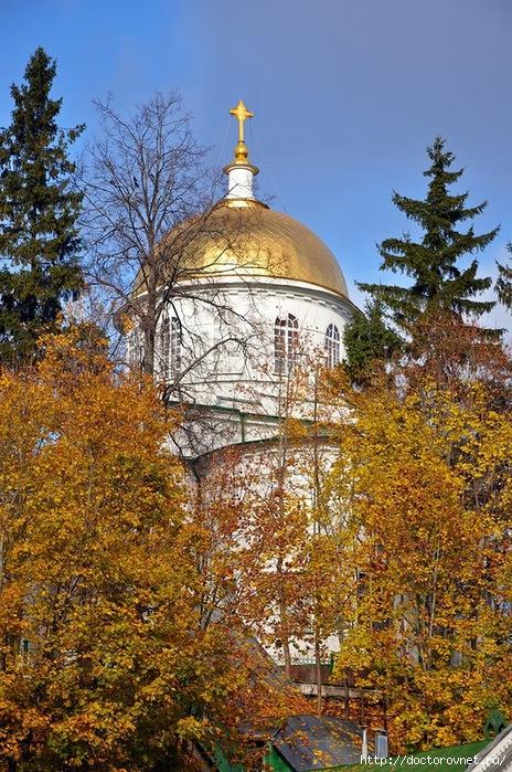 Псково-Печерский монастырь31 (464x700, 368Kb)