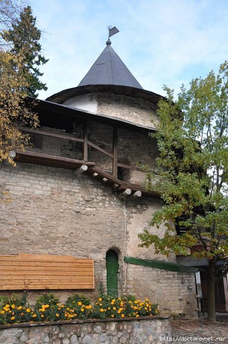 Псково-Печерский монастырь24 (464x700, 254Kb)