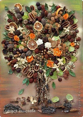 Коллаж из цветов своими руками фото 788