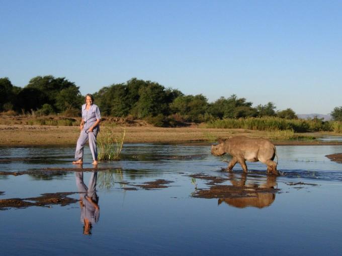 носорог джимми фото 3 (680x510, 73Kb)