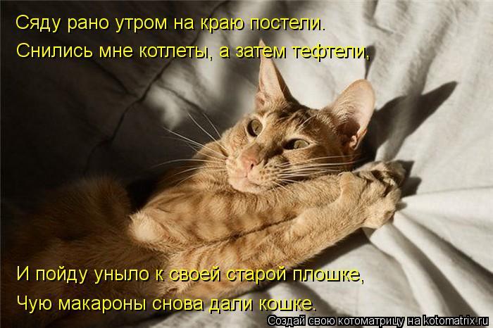 kotomatritsa_-A (700x466, 60Kb)
