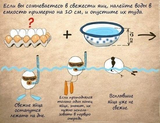 http://img0.liveinternet.ru/images/attach/c/8/100/966/100966464_CNiQ5SQL644.jpg