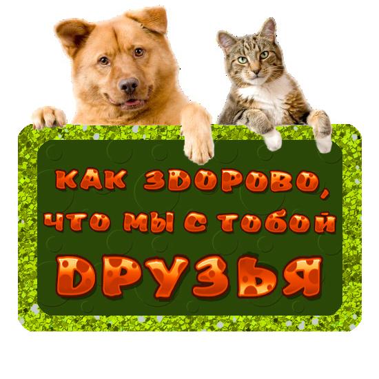 друзья (550x550, 316Kb)